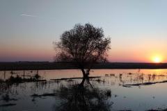 hortobagy-naplemente